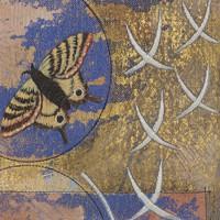 Moth by Moonlight